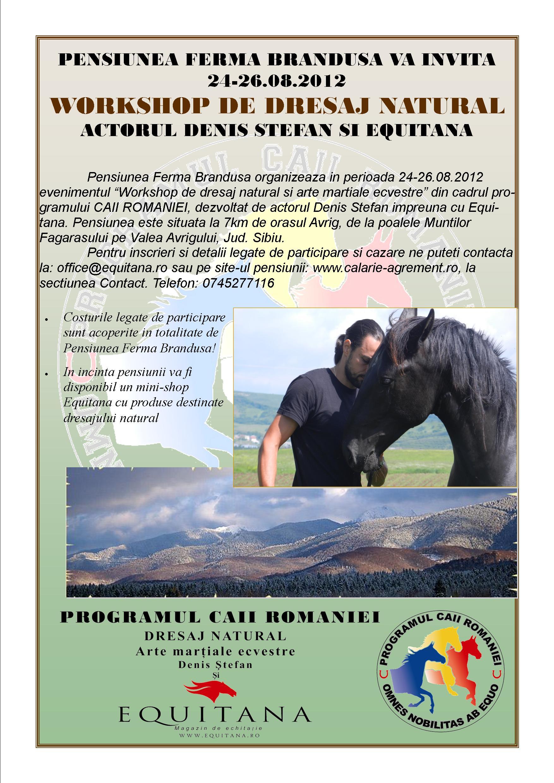 PROGRAMUL CAII ROMANIEI LA PENSIUNEA FERMA BRANDUSA 24-26.08.2012, SIBIU