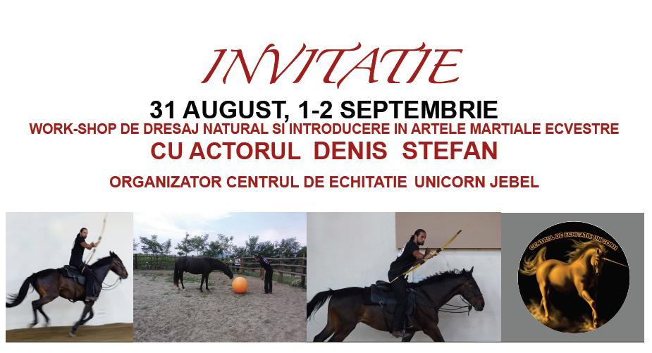 CAII ROMANIEI LA TIMISOARA, 31.08.2012 – 02.09.2012