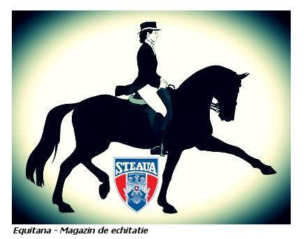 IN ACEST WEEK-END: CUPA ROMANIEI, Dresaj 2012 Grand-Prix-ul Romaniei,  Ed. III