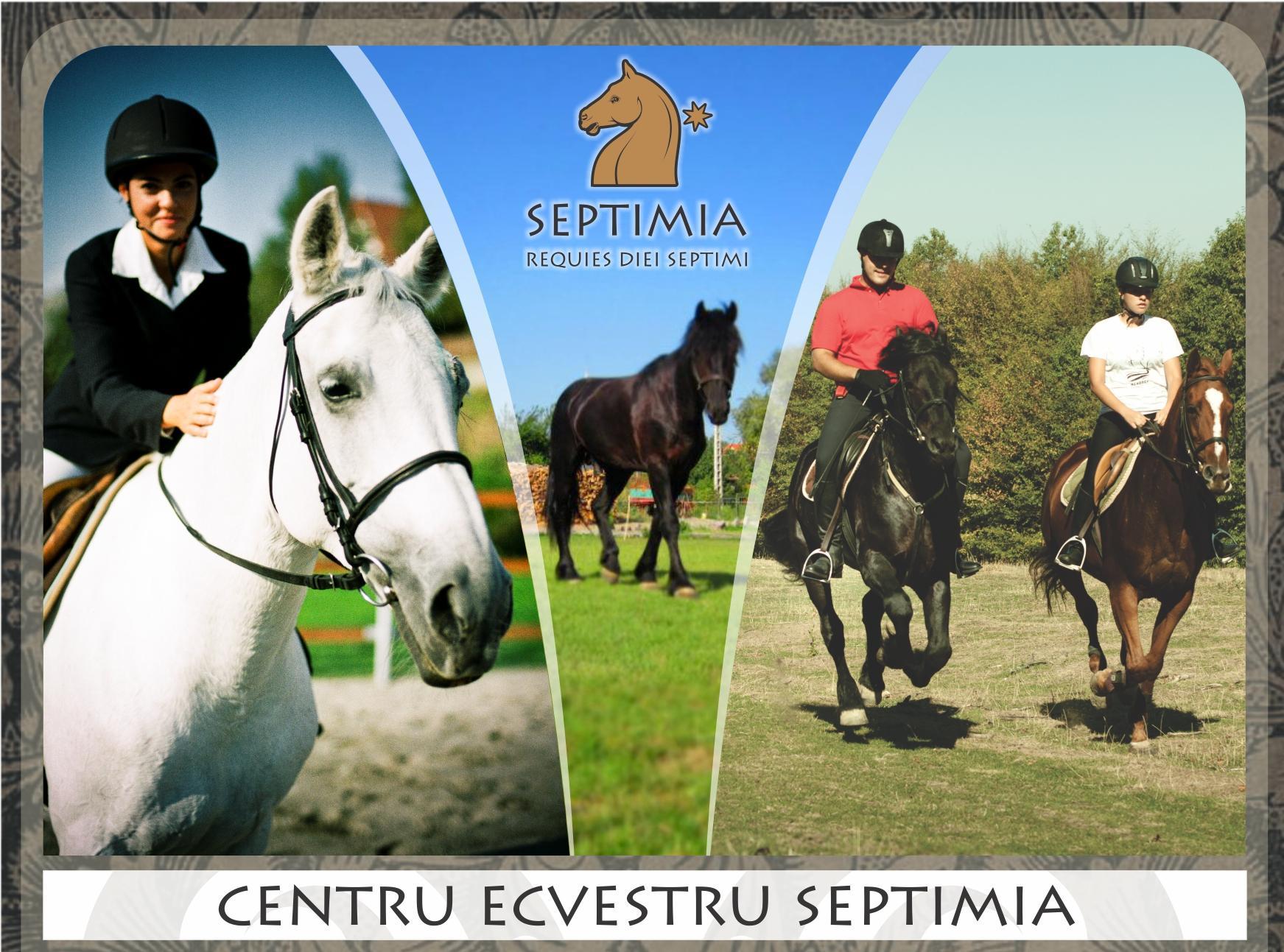 CENTRUL ECVESTRU SEPTIMIA, ODORHEIU SECUIESC, HARGHITA
