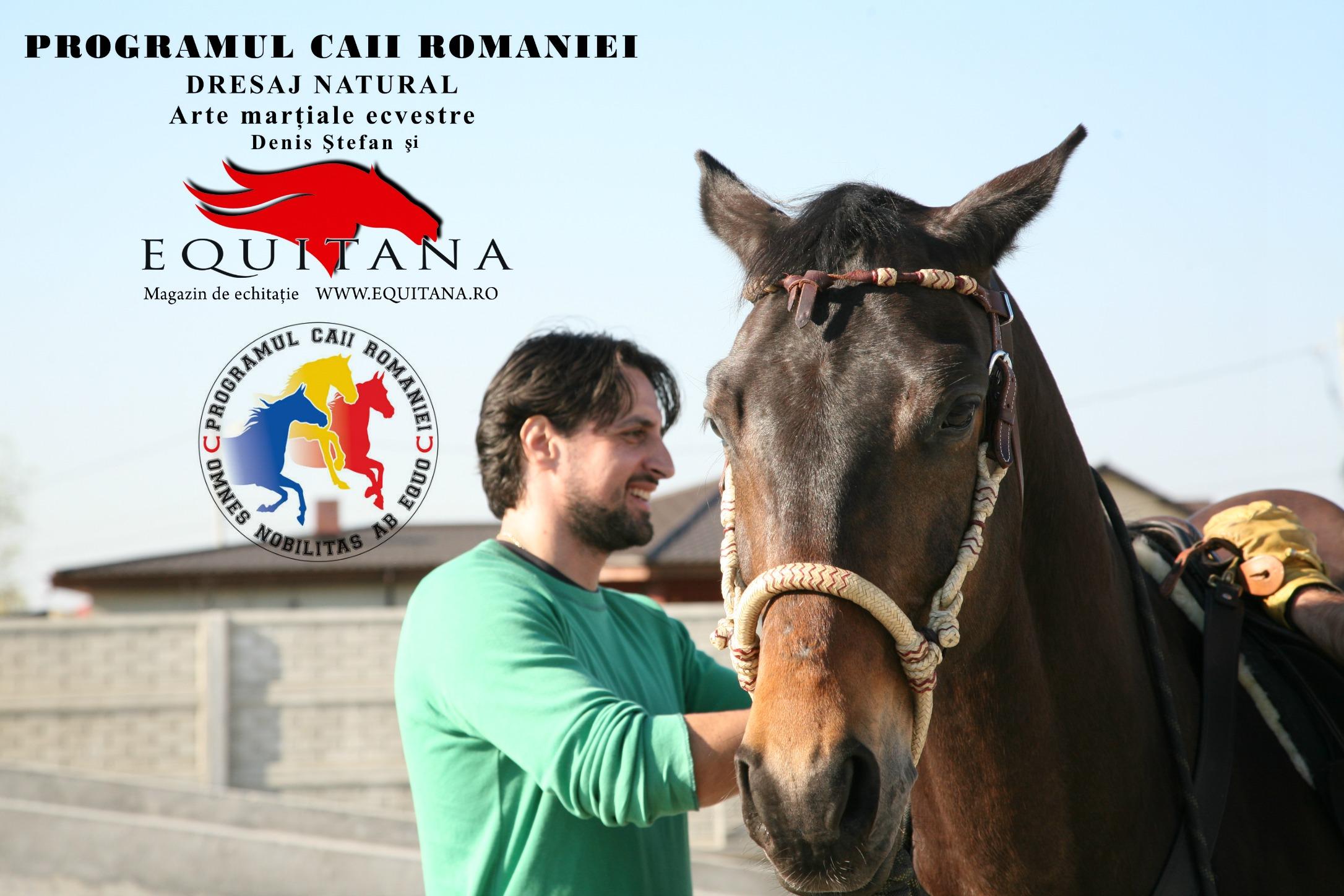 Examenul de final al cursului de dresaj din cadrul Programului Caii României