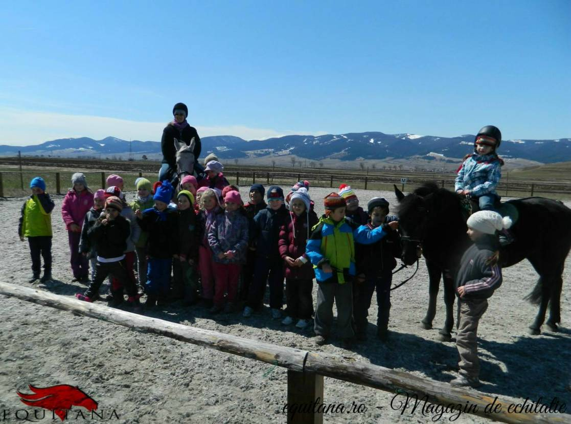 Activități ecvestre în cadrul programului Școala altfel, județul Harghita