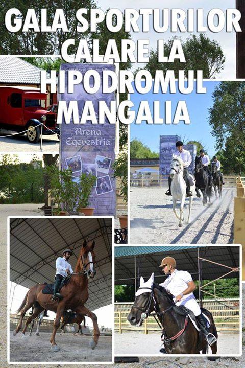 Gala sporturilor călare la Hipodromul Mangalia
