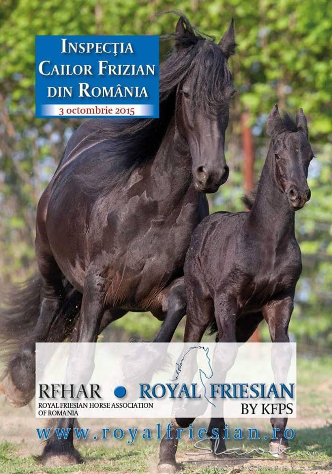 Inspecţia cailor Frizieni din România