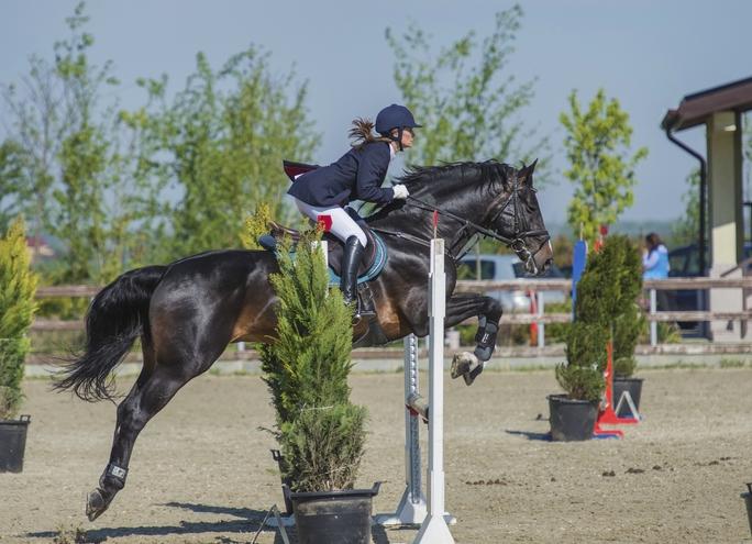 Familia Regală a României participă la  Finala Circuitului Salonul Calului