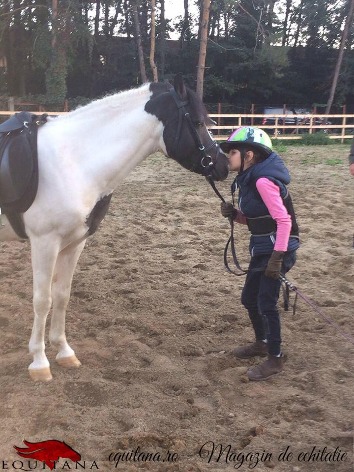 Centrul ecvestru Lucky Horse Otopeni