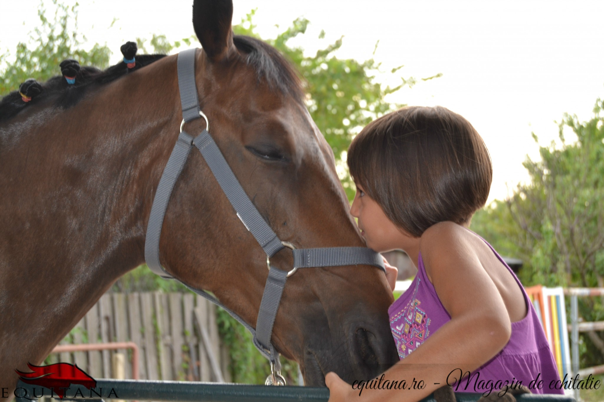 Savannah Riding Club