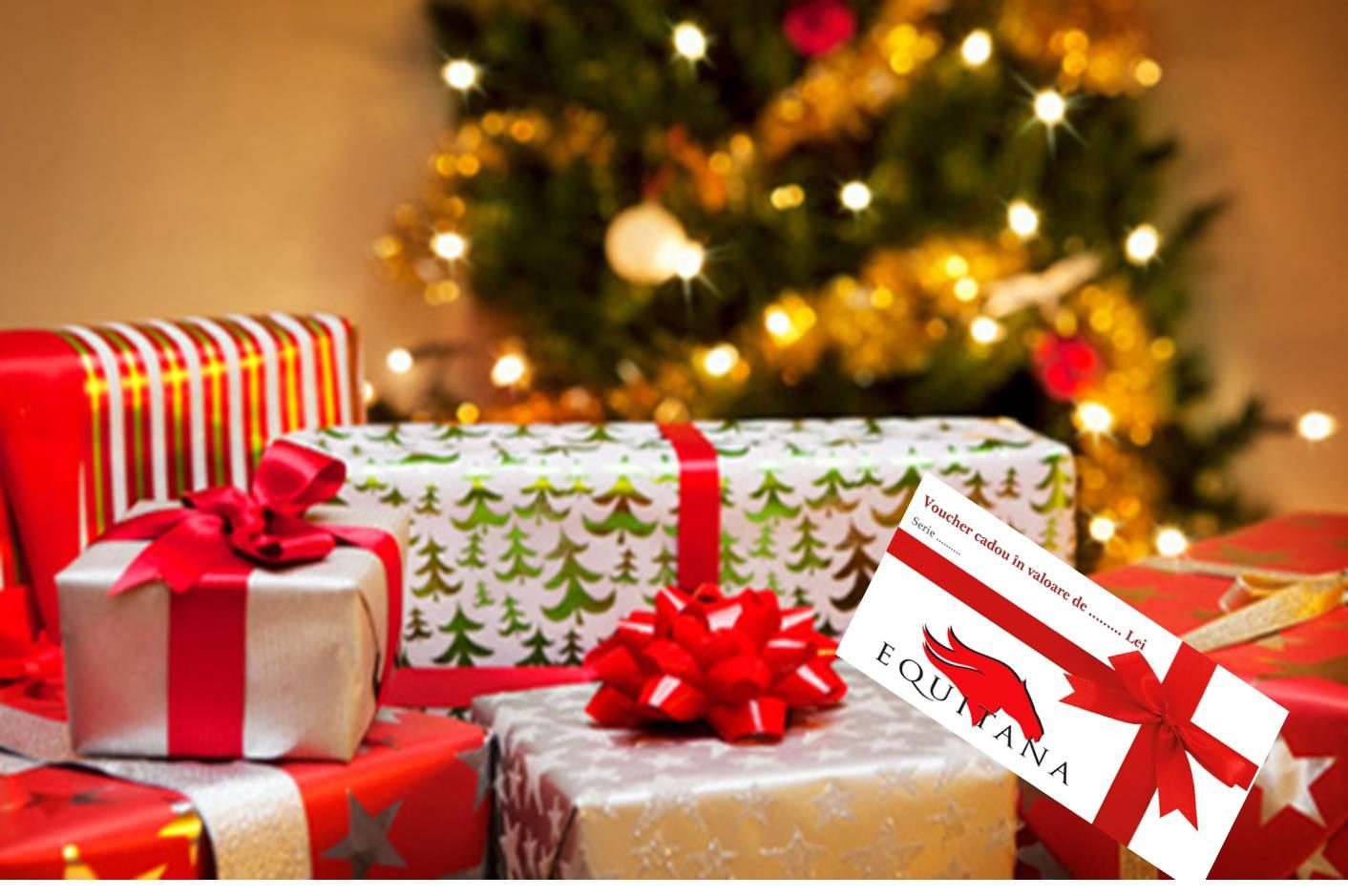 Cea mai bună idee pentru cadoul de Crăciun