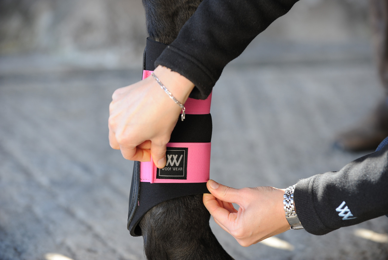 Woof Wear- Tehnologie și Design