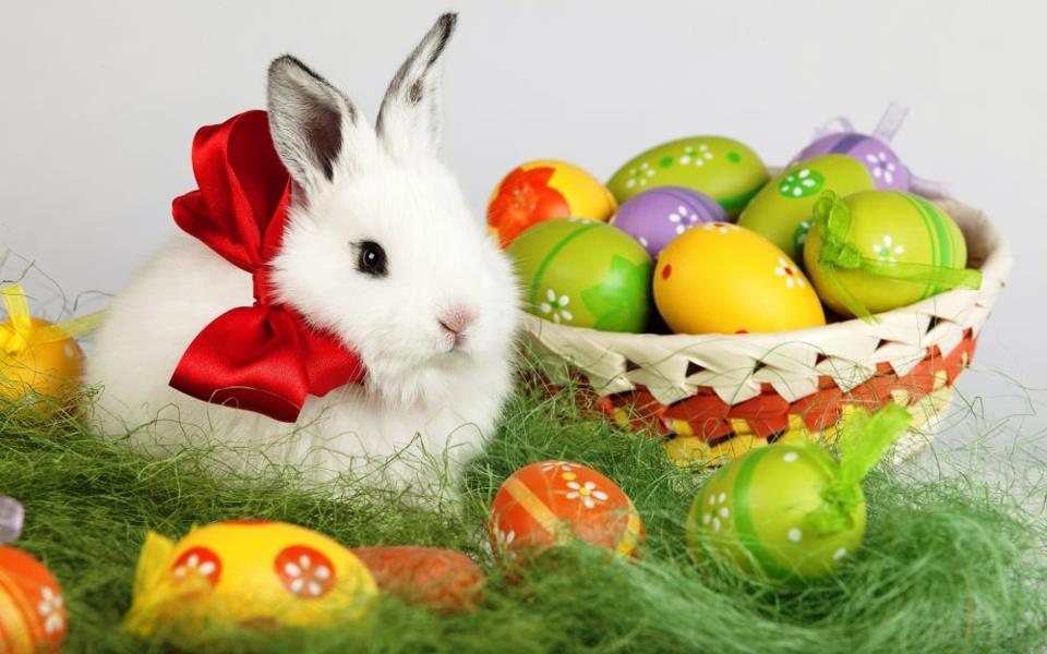 Sărbători Pascale Fericite: Program de Paște