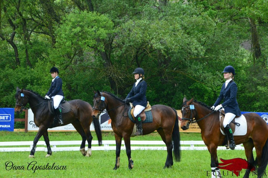 Între 8-10 mai 2015 are loc concursul Transylvania Horse Show