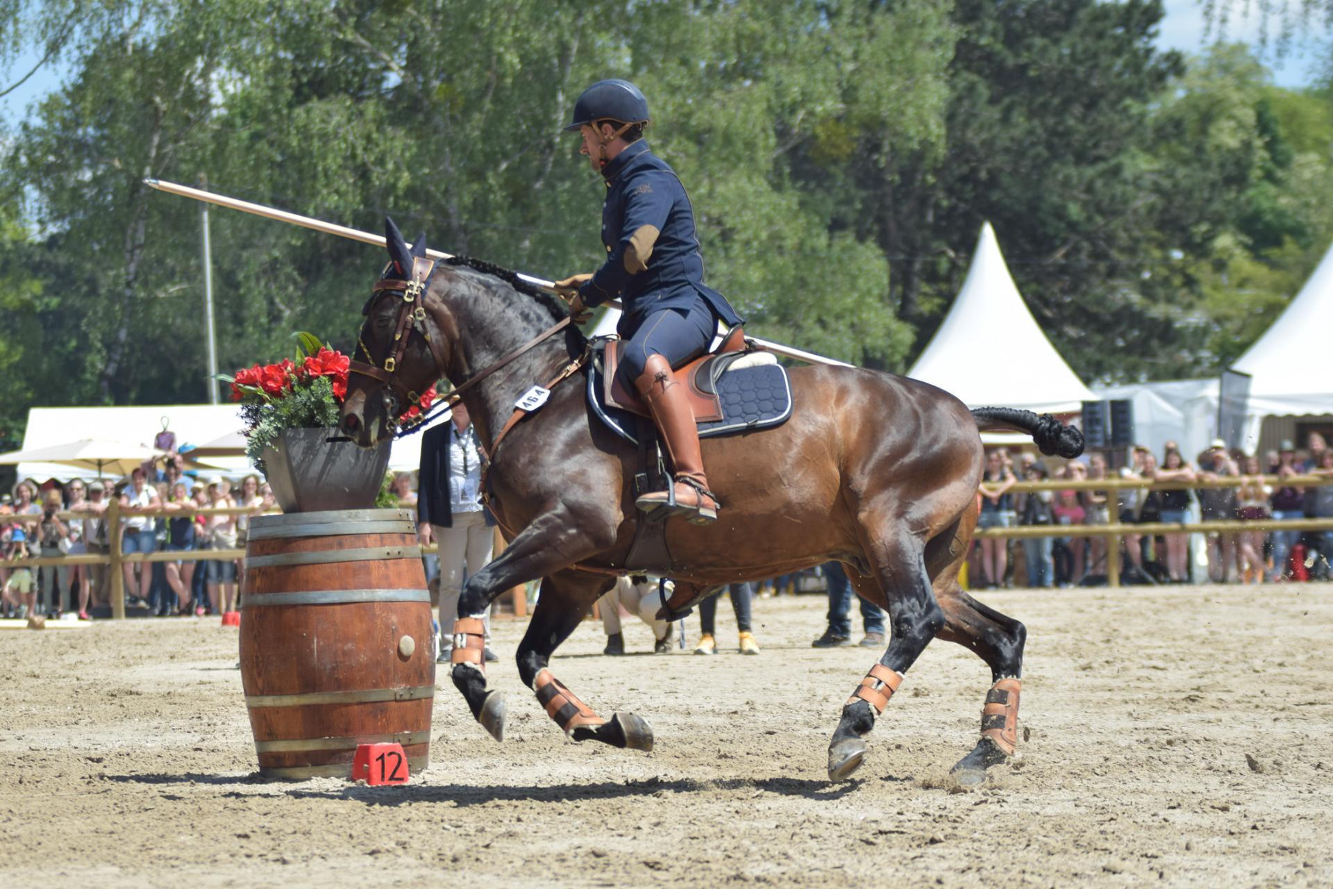 "Working Equitation ""La Porțile Deltei"""