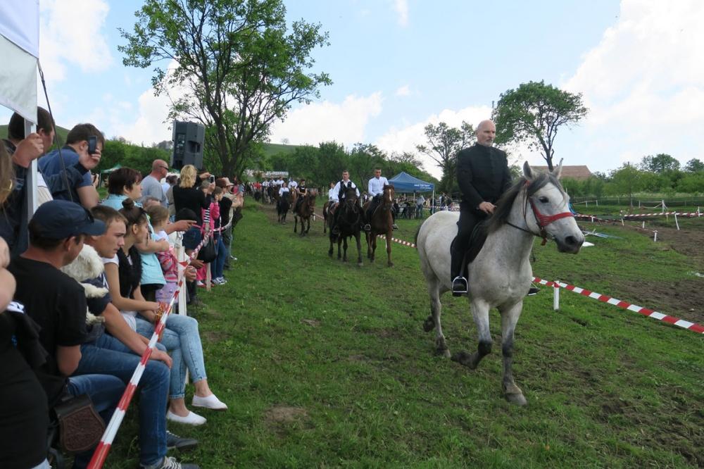 Consiliul Județean Harghita susține introducerea lecțiilor de călărie în programul școlar