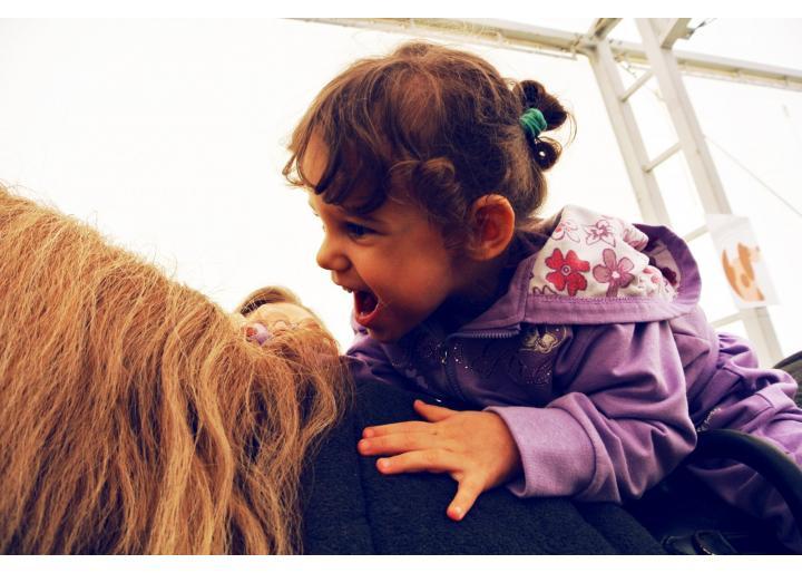 Prezența hipoterapiei în viața dr. Erika Weisz