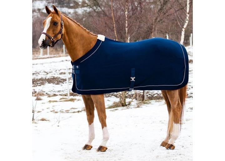 Căldura cailor pe timpul iernii