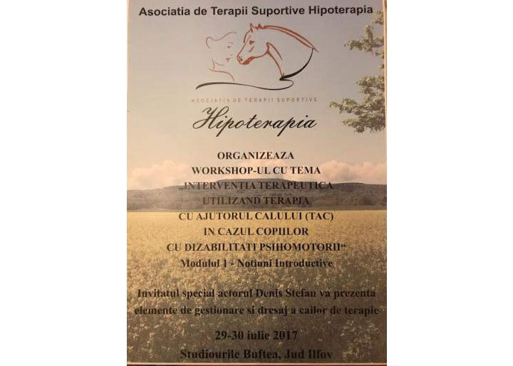 Workshop de hipoterapie cu Anca Bîlbă