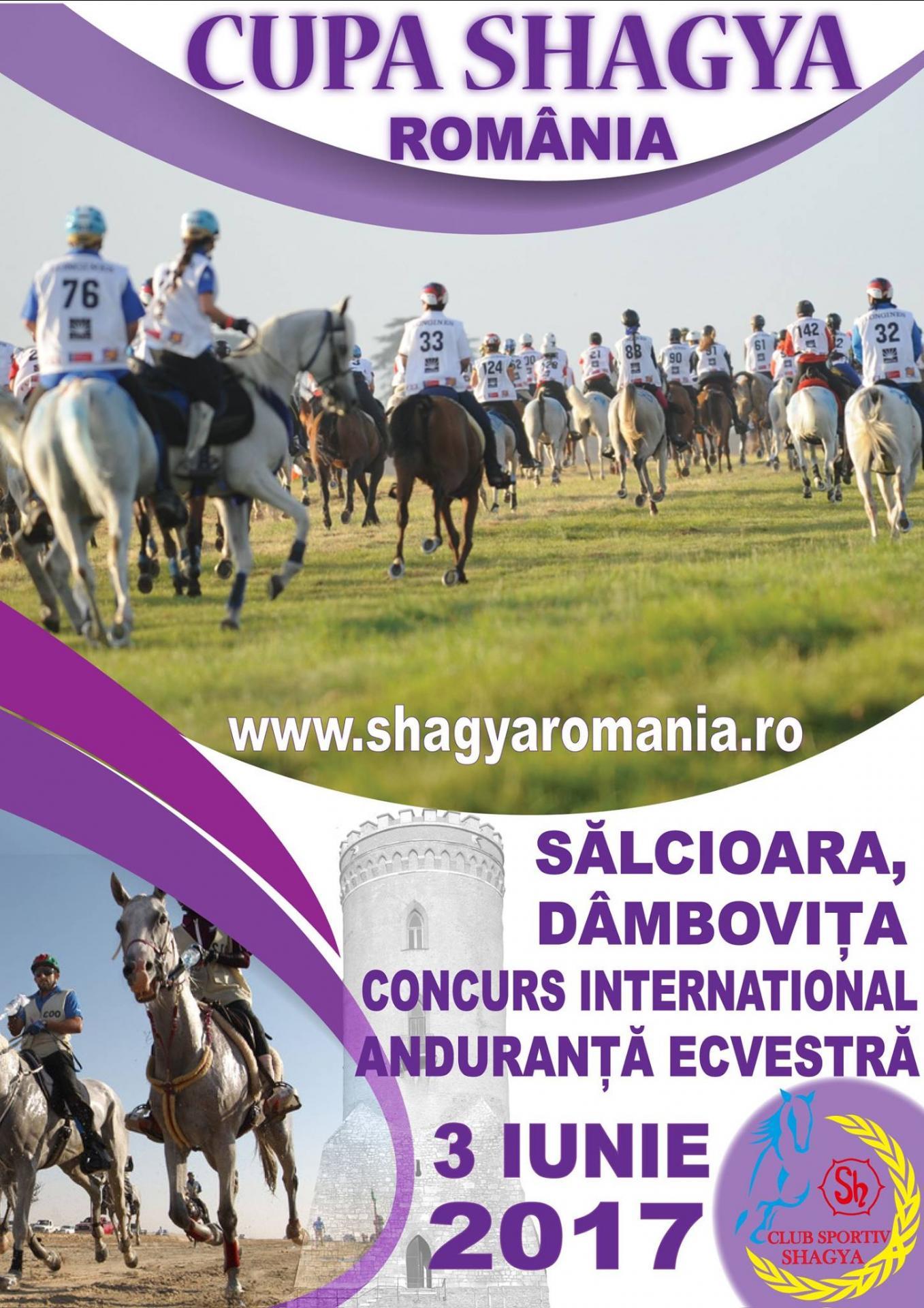 Concurs international de anduranţă, Cupa Shagya ediţia a II-a