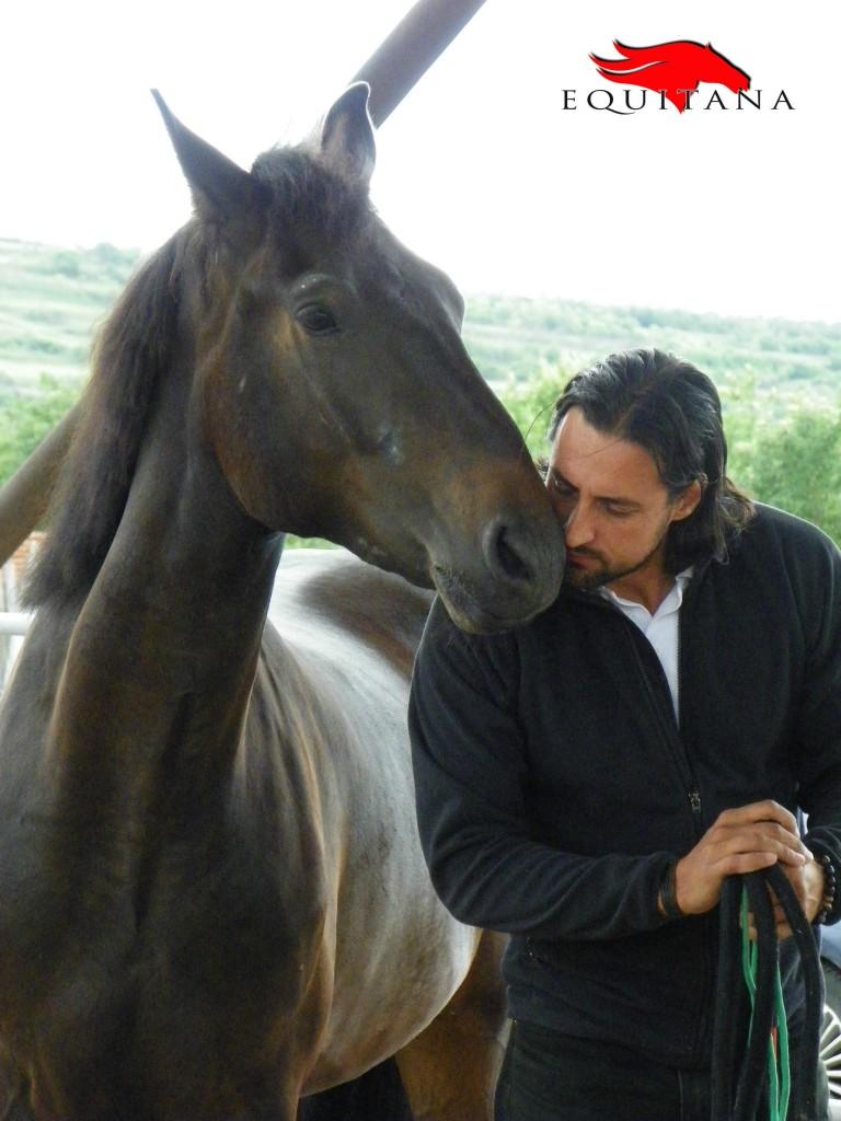 Posesorii cunoștințelor adevărate sunt caii