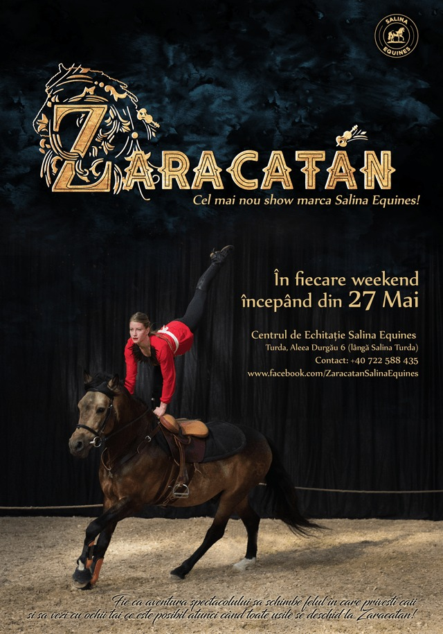 Zaracatan by Salina Equines, Turda