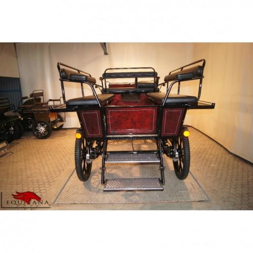 Trasura Wagonette WG -138, Glinkowski-2323
