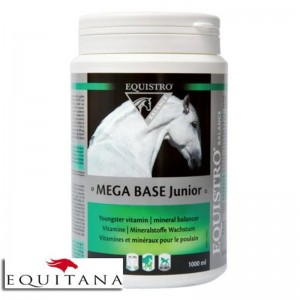 Supliment nutritiv Mega Base Junior Equistro