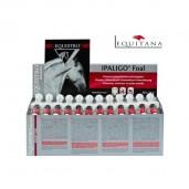Ipaligo pentru manji, vitamine, aminoacizi si microelemente, Ipaligo Foal, Equistro-1060