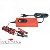Incarcator Acumulator automat pentru baterie de 12 V
