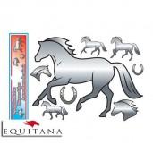 Set autocolante in oglinda cu cai